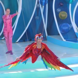 Sea World Dolphin Show mimics Cirque du Soleil